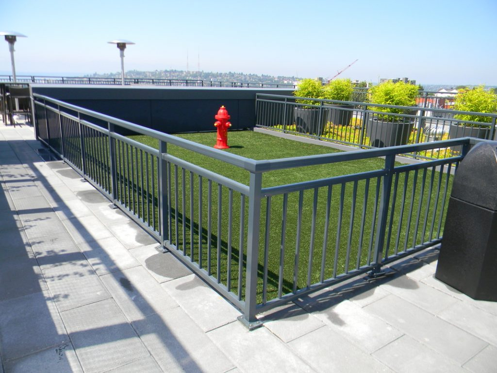 Rooftop Picket Rail Dog Run
